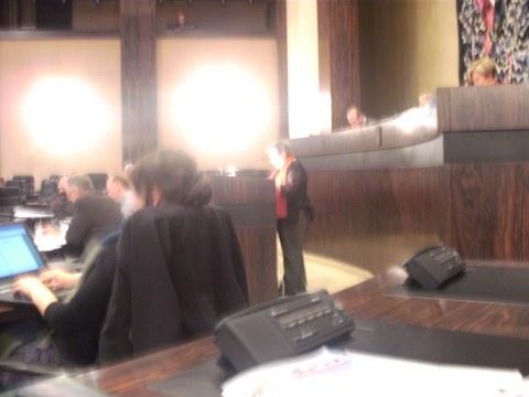 Slechte amateurfoto van Nicoleke tijdens haar toespraak, met vooral de lampen van de statige raadszaal. Op vakbondsvergaderingen had Nicoleke vaak een omgekeerde bierkrat nodig om boven het gestoelte uit te komen, hier net niet :-)