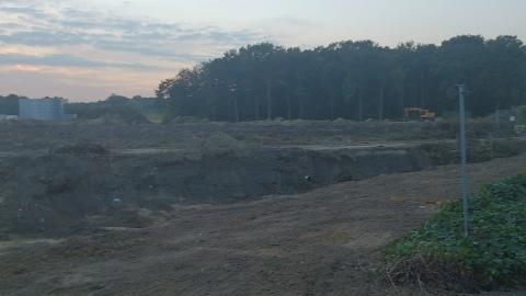 Het nog resterende stukje bos is nu bedreigd door verstoring van de waterhuishouding.