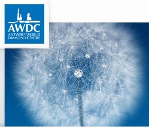 Stad en provincie willen in totaal 20 miljoen uitgeven voor een loutere promotiestand van Antwerp World Diamond Centre